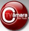 TV CAMERA LOGO